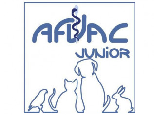 afvac junior